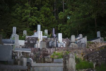 Un petit cimetière perdu dans la forêt