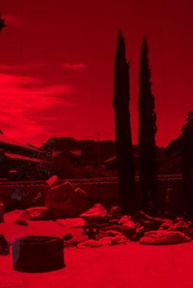 Le jardin de la Yokoo House caché derrière son écran rouge